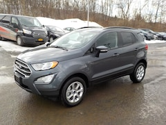New 2019 Ford EcoSport SE Crossover for Sale in Oneonta NY