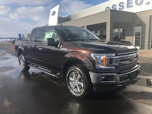2019 Ford F-150 Truck SuperCrew Cab 1FTEW1EP9KFA96369