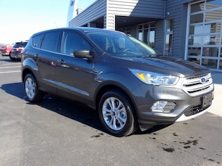 New 2019 Ford Escape SE SUV in Osseo