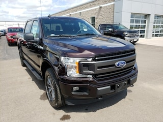 New 2019 Ford F-150 King Ranch Truck in Osseo