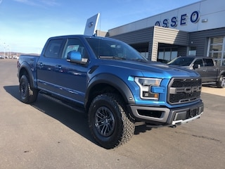New 2019 Ford F-150 Raptor Truck in Osseo