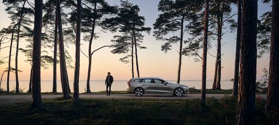 Volvo Dealership Serving Orange Park Florida O Steen Volvo Cars