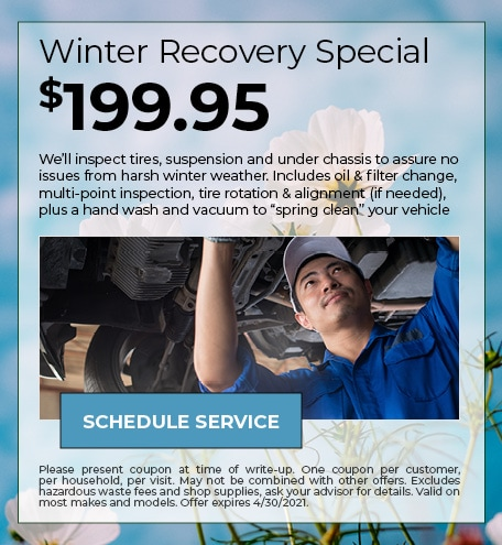 Winter Recovery Special $199.95 - April Specials