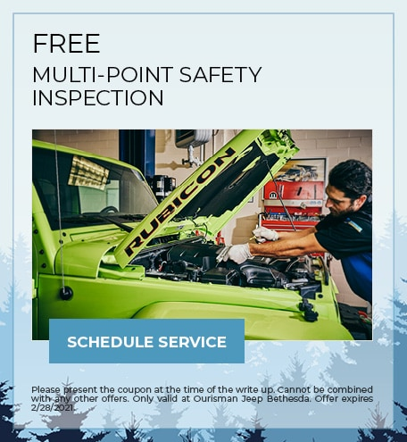 FREE MULTI-POINT SAFETY INSPECTION - February Special