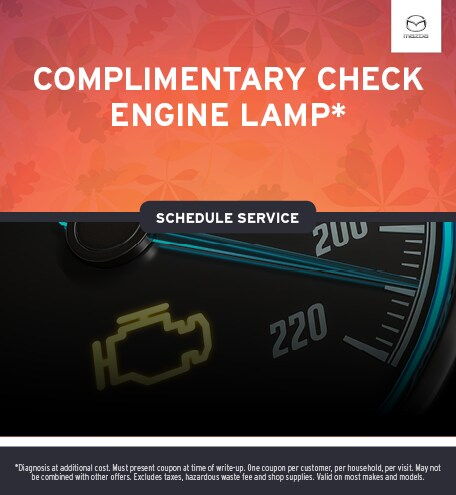 Check Engine Lamp