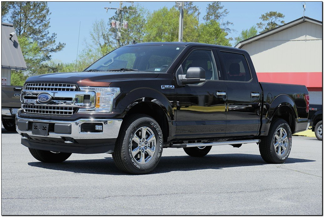 2019 Ford F-150 XL XL 4WD SuperCrew 5.5 Box