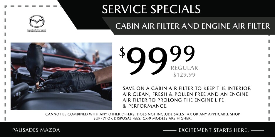 Cabin Air Filter and Engine Air Filter