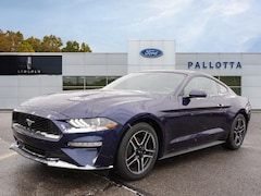 New 2019 Ford Mustang Ecoboost Coupe for sale in Wooster, OH