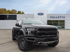 New 2019 Ford F-150 Raptor Truck for sale in Wooster, OH