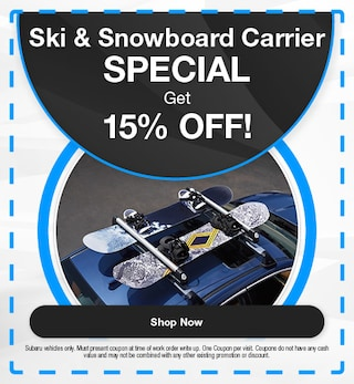 Ski & Snowboard Carrier Special