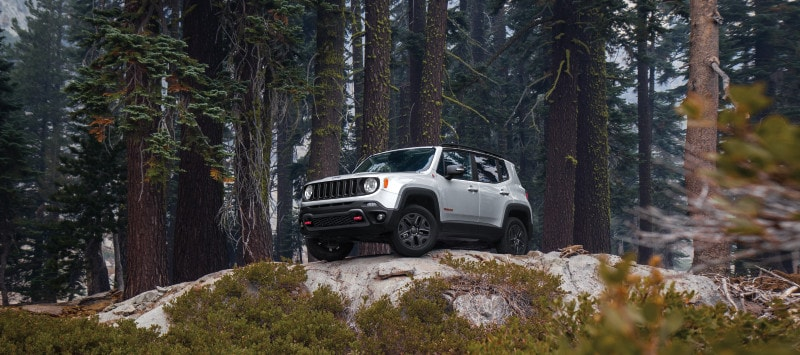 A white 2018 Jeep Renegade in forest