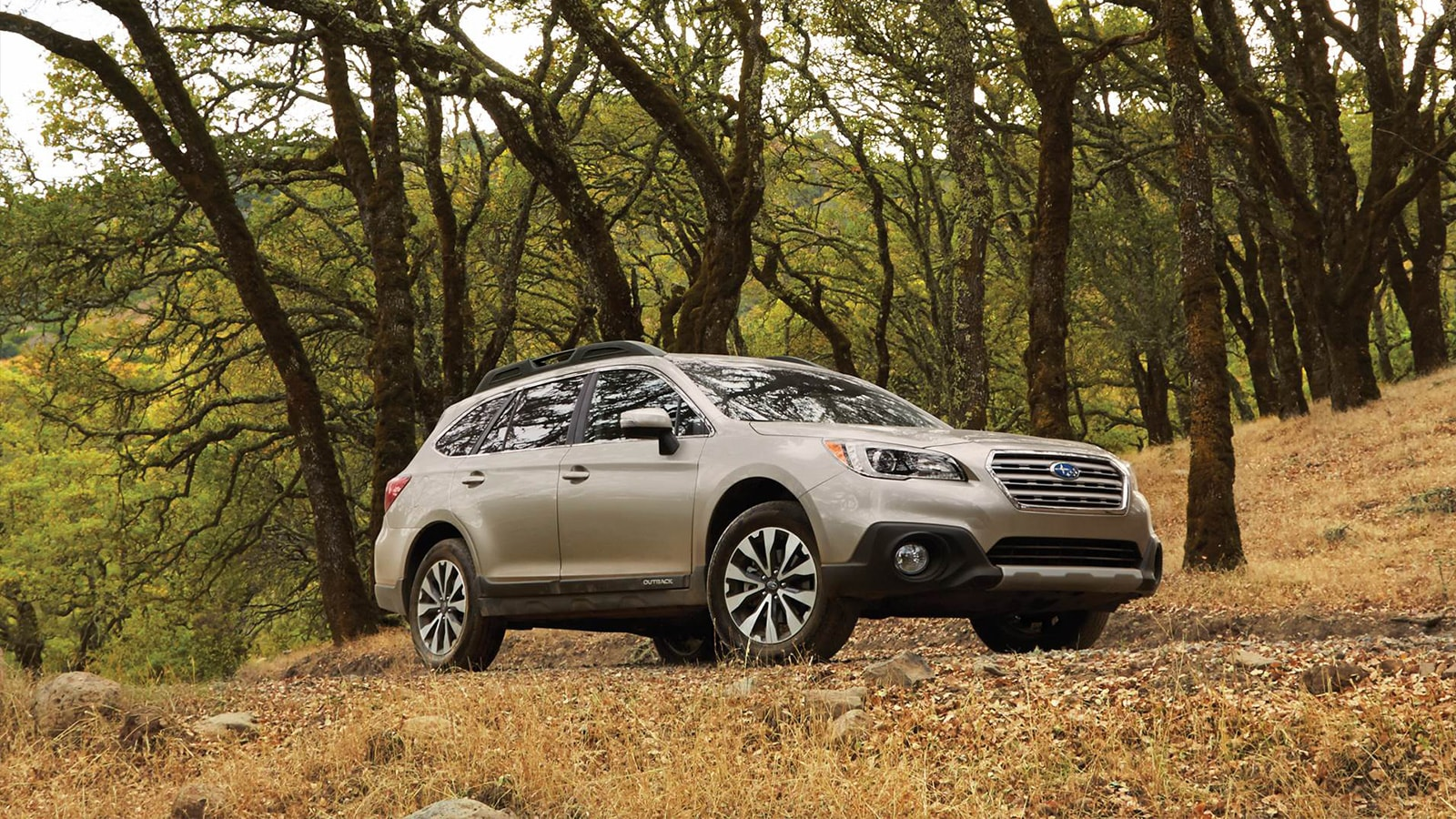 Used Subaru Outback for sale in Wilmington NC