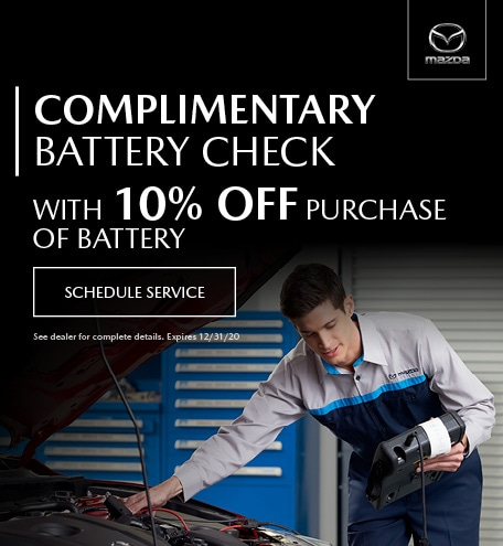 October Complimentary Battery Check With 10% Off Purchase Of Battery