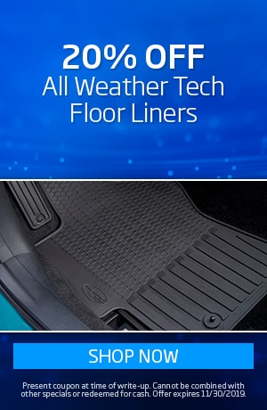 Take 20% Off All Weather Floor Mats