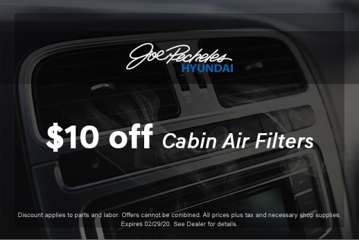 Cabin Air Filter February
