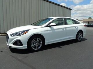 New 2019 Hyundai Sonata SEL Sedan 5NPE34AF9KH790945 for sale in Greenville NC