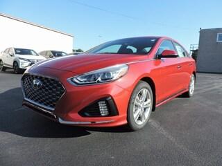 New 2019 Hyundai Sonata Sport Sedan 5NPE34AFXKH734741 for sale in Greenville NC