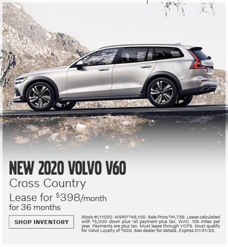 January | 2020 V60 Cross Country