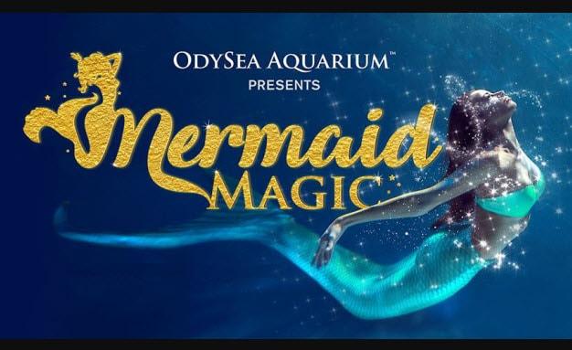 OdySea Aquarium - Mermaid Magic