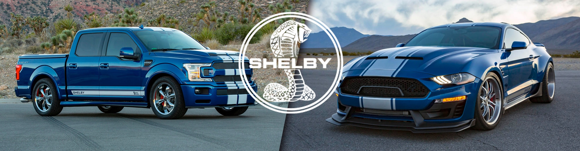 Shelby Trucks Performance