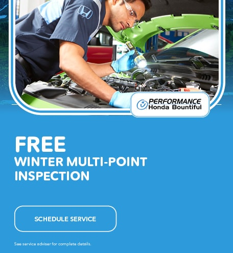 Free Winter Multi-Point Inspection