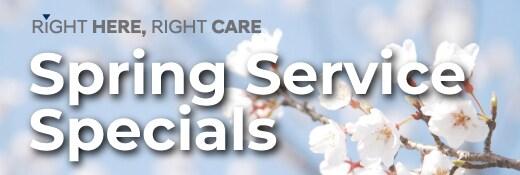 Hyundai Spring Service Specials