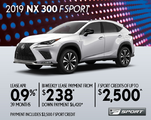 2019 NX 300 Special Offer