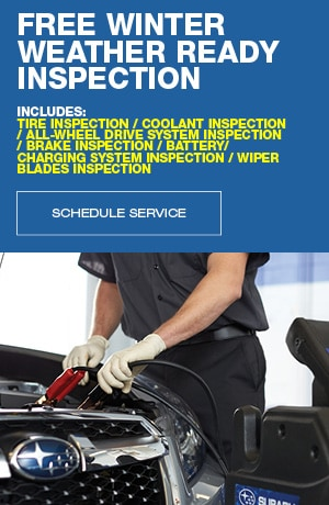 Free Winter Weather Ready Inspection
