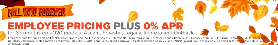 EMPLOYEE PRICING PLUS 0% APR for 63 months on 2020 models