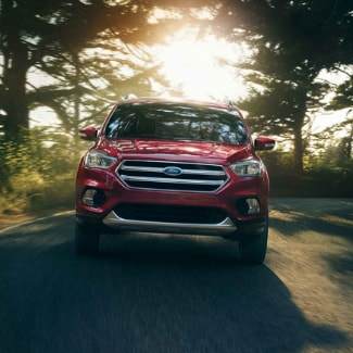 A red 2019 Ford Escape driving around a curve on a country road with trees in the background and the sun shining through the branches