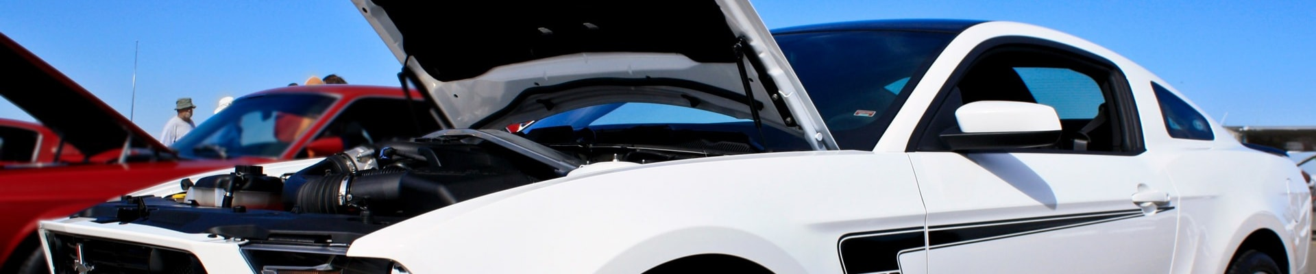 Close up view of a white Ford Mustang with the hood raised looking at the engine and checking out the inner mechanics of the car