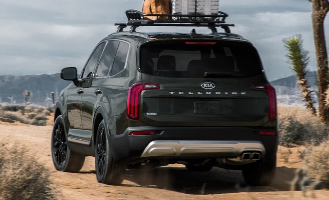 2020 Kia Telluride rear exterior view carrying cargo