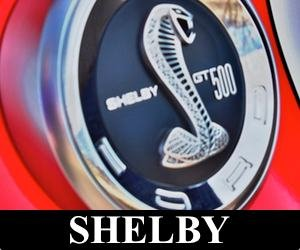 Ford Shelby gt500 logo