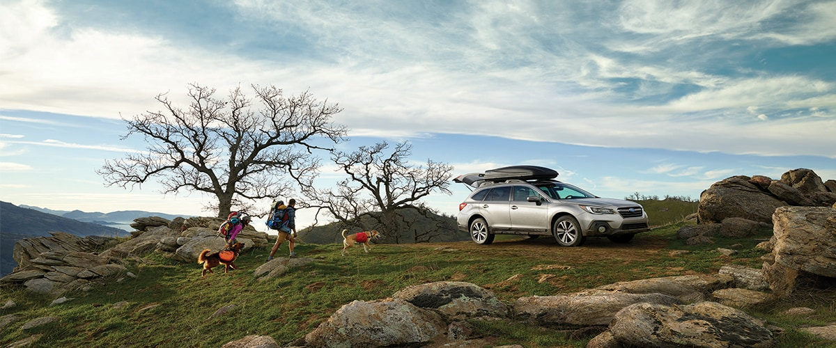 Subaru Outback on a Mountain