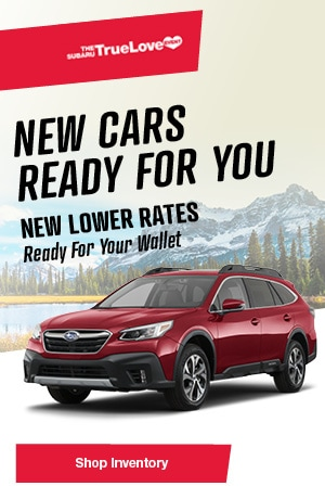 February New Cars Offer