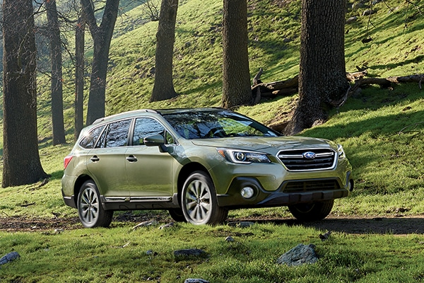2019 Subaru Outback forest