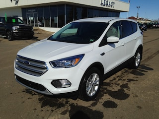 2019 Ford Escape SE SUV [693, YZ, B, 99D, 446, 200A, 50C, K] Ecoboost Engine