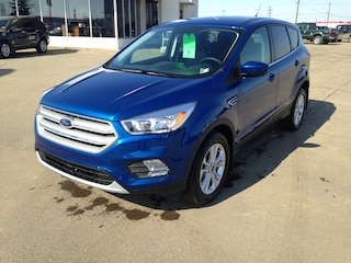 2019 Ford Escape SE SUV [693, B, 99D, 446, 85T, N6, 200A, 60S, K] Ecoboost Engine