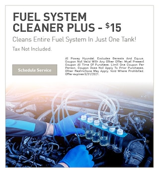 Fuel System Cleaner Plus - $15