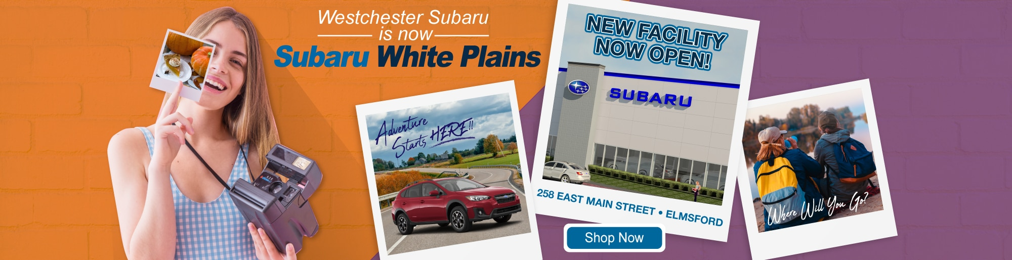The Premier Collection | New & Pre-Owned Volkswagen ...
