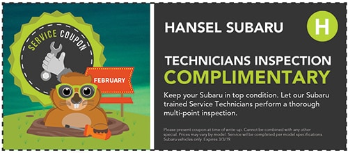 Complimentary Technicians Inspection