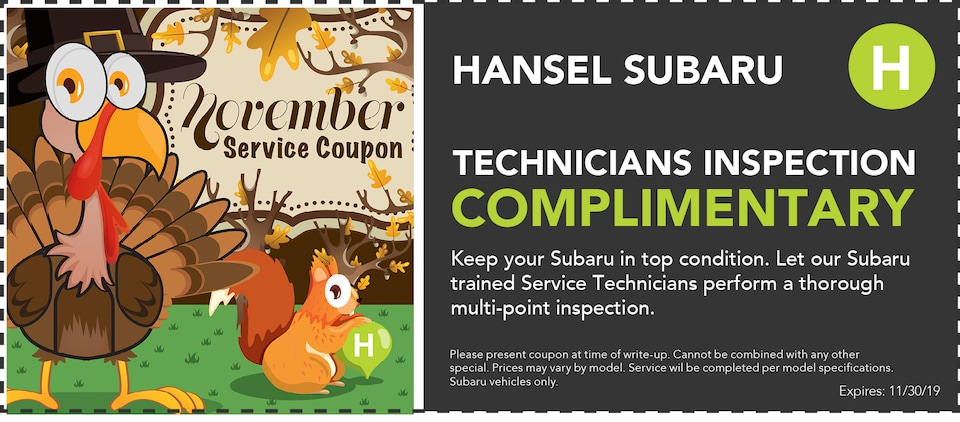 Technicians Inspection Complimentary