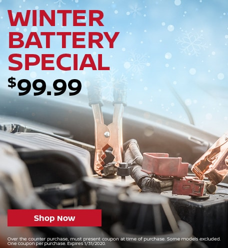 Winter Battery Special