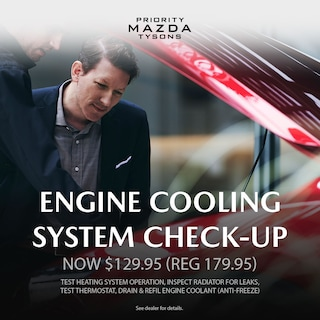 Engine Cooling System Check-Up