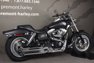 2010 HARLEY-DAVIDSON 1200 Custom