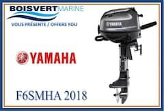 2018 YAMAHA F6SMHA -