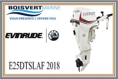2018 EVINRUDE E25DTSLAF