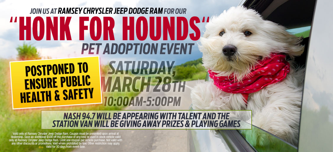 Honk For Hounds Pet Adoption Event