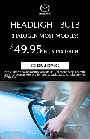 Headlight Bulb (Halogen Most Models)