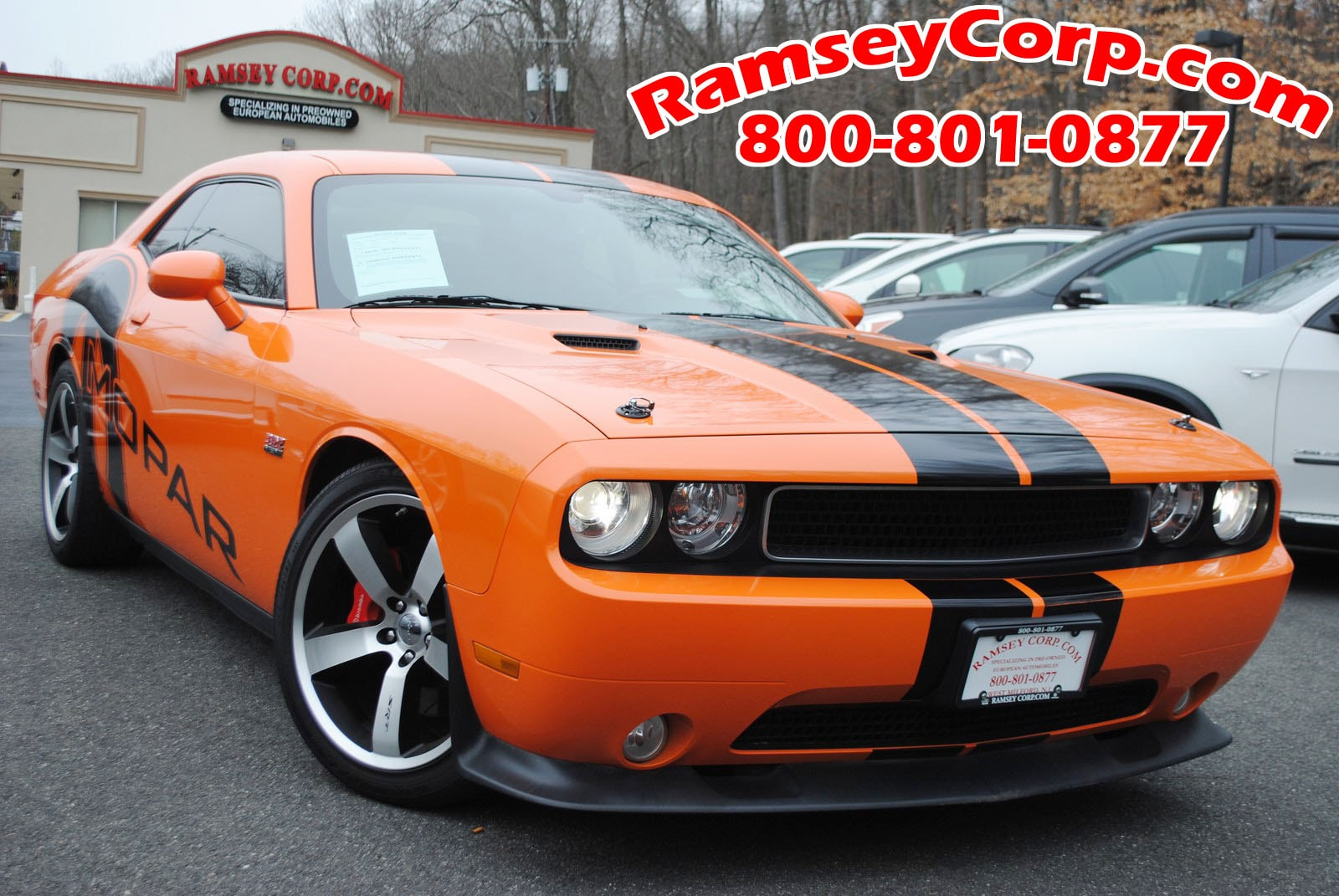 used 2012 dodge challenger for sale west milford nj. Black Bedroom Furniture Sets. Home Design Ideas